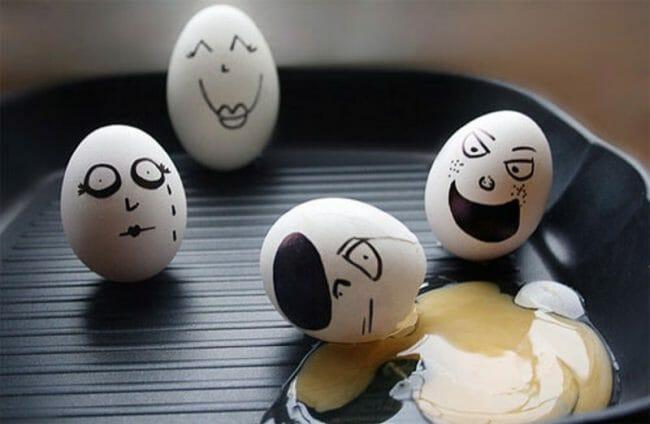 senang dan sedih di atas penderitaan telur yang lain