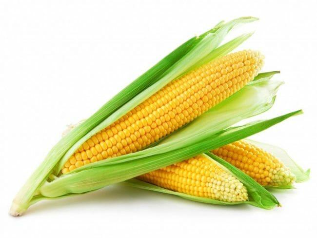 Sayuran Jagung