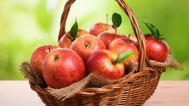 Buah Apel (Apple) Merah