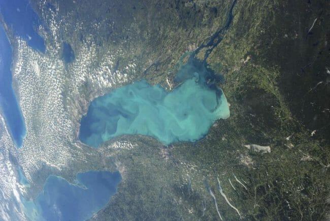 Plankton Danau Ontario