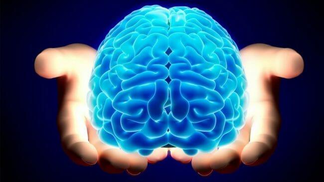otak manusia dipelajari dalam psikologi