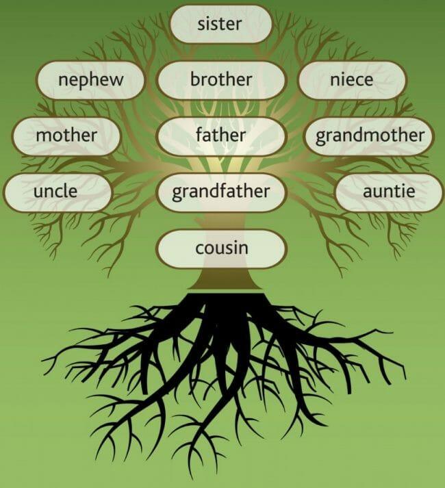 Sejarah Keluarga