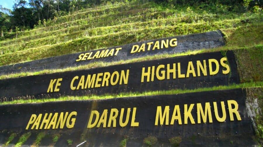 tanah tinggi cameron