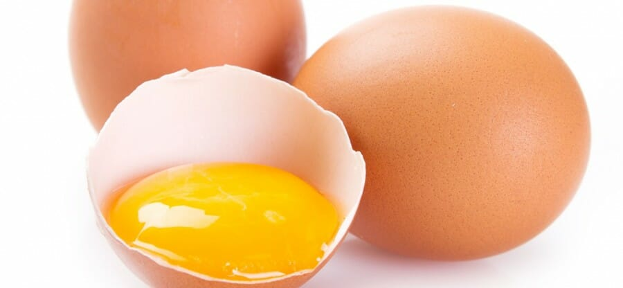 membedakan telur asli dan telur palsu