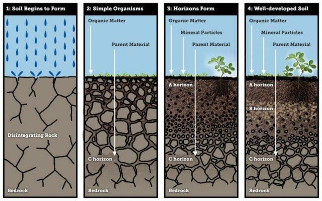 proses-terjadinya-pembentukan-tanah