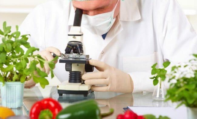 penelitian teknologi pangan dan percobaan